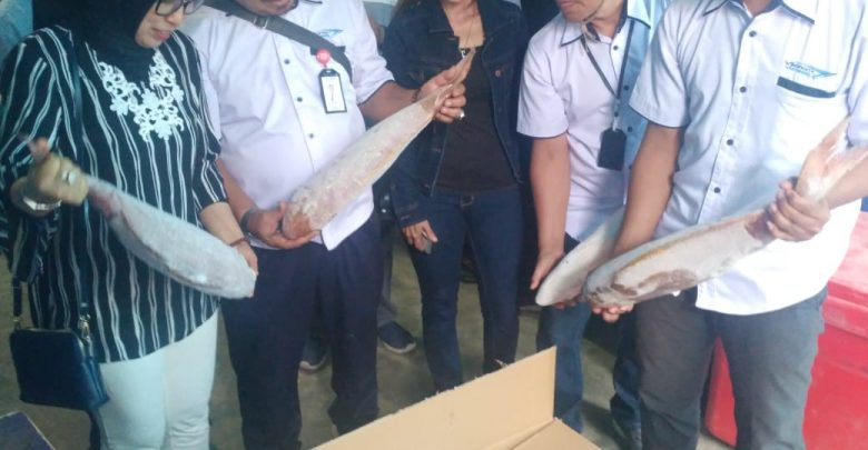 Photo of Perum Perindo Ekspor Ikan ke Vietnam Senilai USD65.142