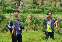 Photo of Pertamina Gulirkan Modal Kemitraan Bagi 38 Petani Hortikultura