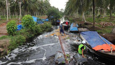 Photo of 75 Tahun PLN Hadir, Akses Listrik Semakin Merata di Indonesia